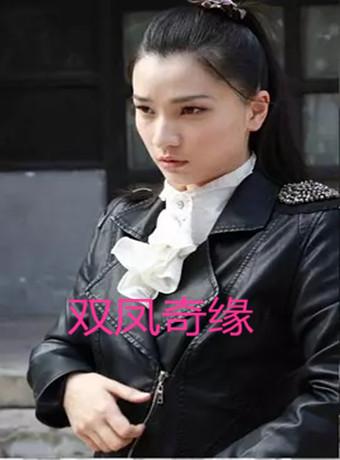 双凤奇缘海报剧照