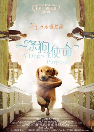 一条狗的使命海报剧照