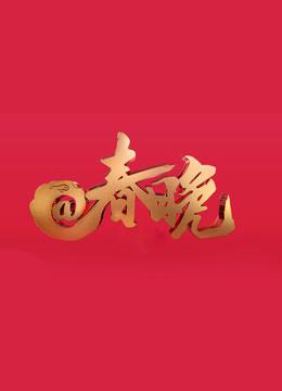 2018央视网络春晚